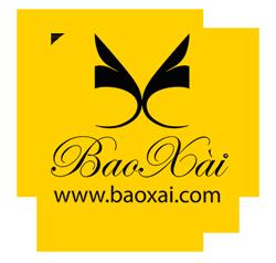 baoxai.com