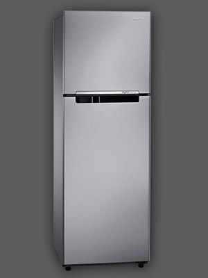 Tủ lạnh Samsung RT-25FARBDSA