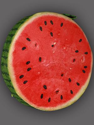 Gối hình quả dưa hấu